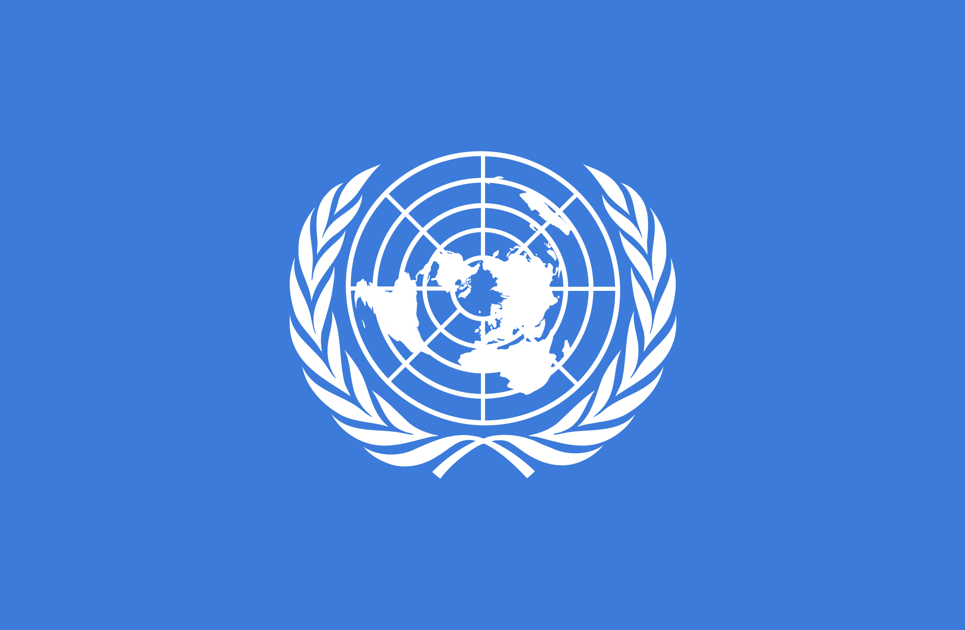 United Nations Flags With Names Palestinian Lib...