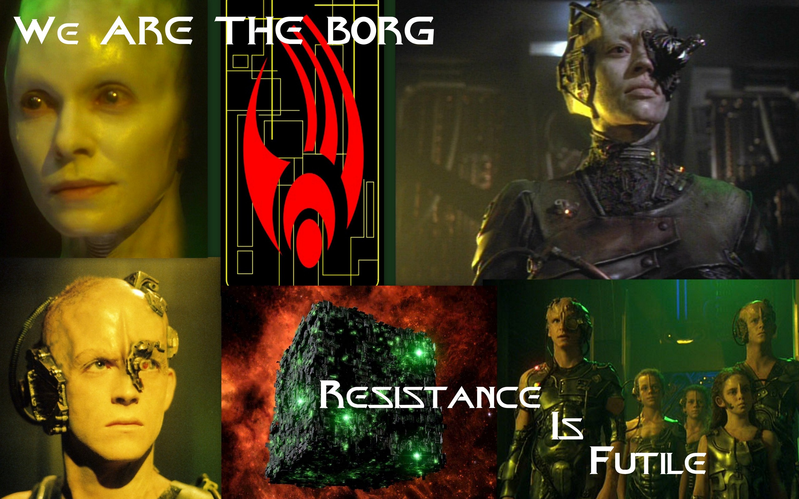 The Borg | Holland's Heroes