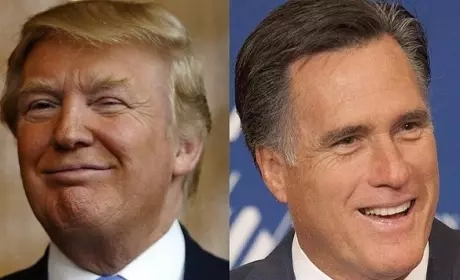mitt-and-don
